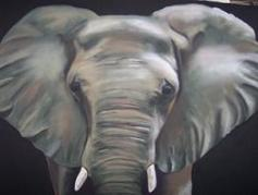 Pet Portraits - African Elephant In Pastel