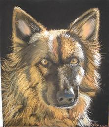 Pet Portraits - A German Shepherd In Pastel